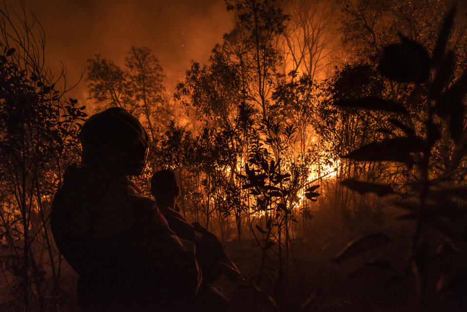 Firefighters, forest brigades, volunteers and Civil Defense agents struggle to contain the flames that consume out of control a large part of the Juquery State Park, in Greater Sao Paulo, Brazil, on 23 August 2021.. About 80 to 90% of the park has already been consumed, according to brigade experts in the area, in the largest forest fire in the park - the last savannah reserve in the metropolitan region. According to the firemen, the fire was started by a balloon drop, a prohibited practice and considered a crime in Brazil, but very common during the winter season - precisely the driest and most susceptible to forest fires (Photo by Gustavo Basso/NurPhoto via Getty Images)