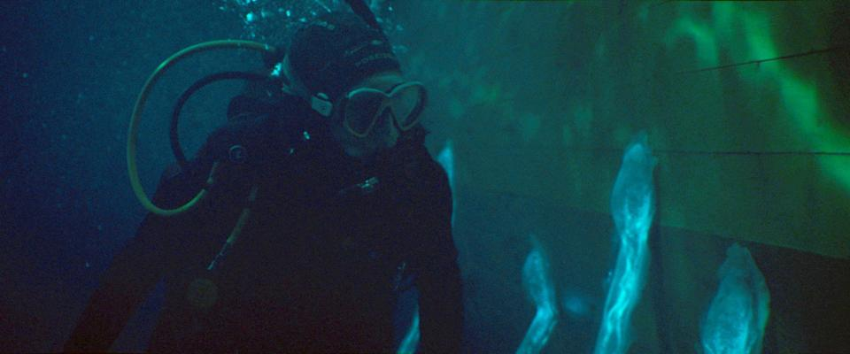 """Hermione Corfield plays a marine-biology student investigating some otherworldly weirdness attached to a fishing trawler in """"Sea Fever."""""""