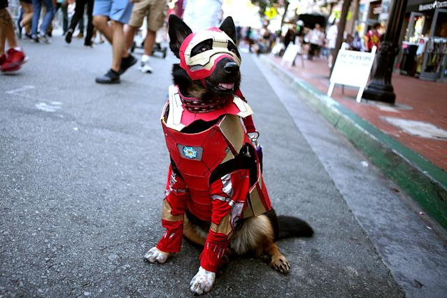 <p>Cosplayer dog dressed as Iron Man at Comic-Con International on July 19, 2018, in San Diego. (Photo: Tommaso Boddi/Getty Images) </p>