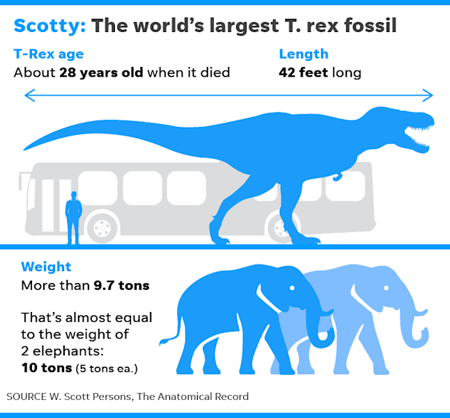 "The massive predator, nicknamed ""Scotty,"" was about 42 feet long and likely weighed more than 9.7 tons, according to a new study."