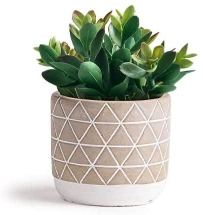 """<p>The pot that comes with the <span>Kurrajong Farmhouse 7.5"""" x 4.5"""" Artificial Succulent Plant in Concrete Cement Pot</span> ($27) will make a statement. The plants are just a bonus!</p>"""