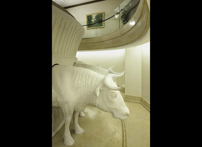 Oxen under the baptismal font in the Kansas City Missouri Temple. All Latter-day Saint baptismal fonts are supported on the backs of 12 oxen statues that symbolize the twelve tribes of Israel.