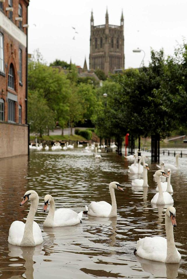 South Parade in Worcester, which is under water yet again following the recent heavy rain which saw a month's worth of rain fall in just 18 hours in parts of the Midlands