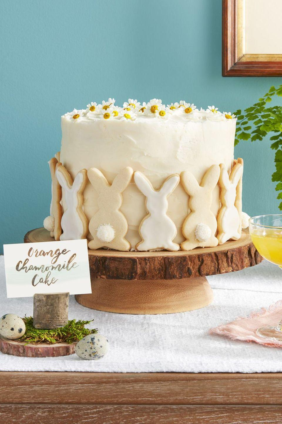"<p>Dress this citrus layer cake with bunny sugar cookies and fresh daisies. </p><p><a class=""link rapid-noclick-resp"" href=""https://www.amazon.com/Easter-Bunny-Cookie-Cutter-Plated/dp/B079Q5Y5KZ/?tag=syn-yahoo-20&ascsubtag=%5Bartid%7C10055.g.4156%5Bsrc%7Cyahoo-us"" rel=""nofollow noopener"" target=""_blank"" data-ylk=""slk:SHOP BUNNY COOKIE CUTTERS"">SHOP BUNNY COOKIE CUTTERS</a></p><p><em><a href=""https://www.countryliving.com/food-drinks/a19041891/orange-chamomile-cake-recipe/"" rel=""nofollow noopener"" target=""_blank"" data-ylk=""slk:Get the recipe from Country Living »"" class=""link rapid-noclick-resp"">Get the recipe from Country Living »</a></em></p>"