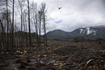 A helicopter flies over the large debris pile left by a mudslide in Oso, Washington, in this April 4, 2014 file photo. REUTERS/Max Whittaker/Files