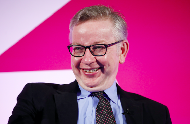 Michael Gove is back in the cabinet as Environment Secretary (Rex)