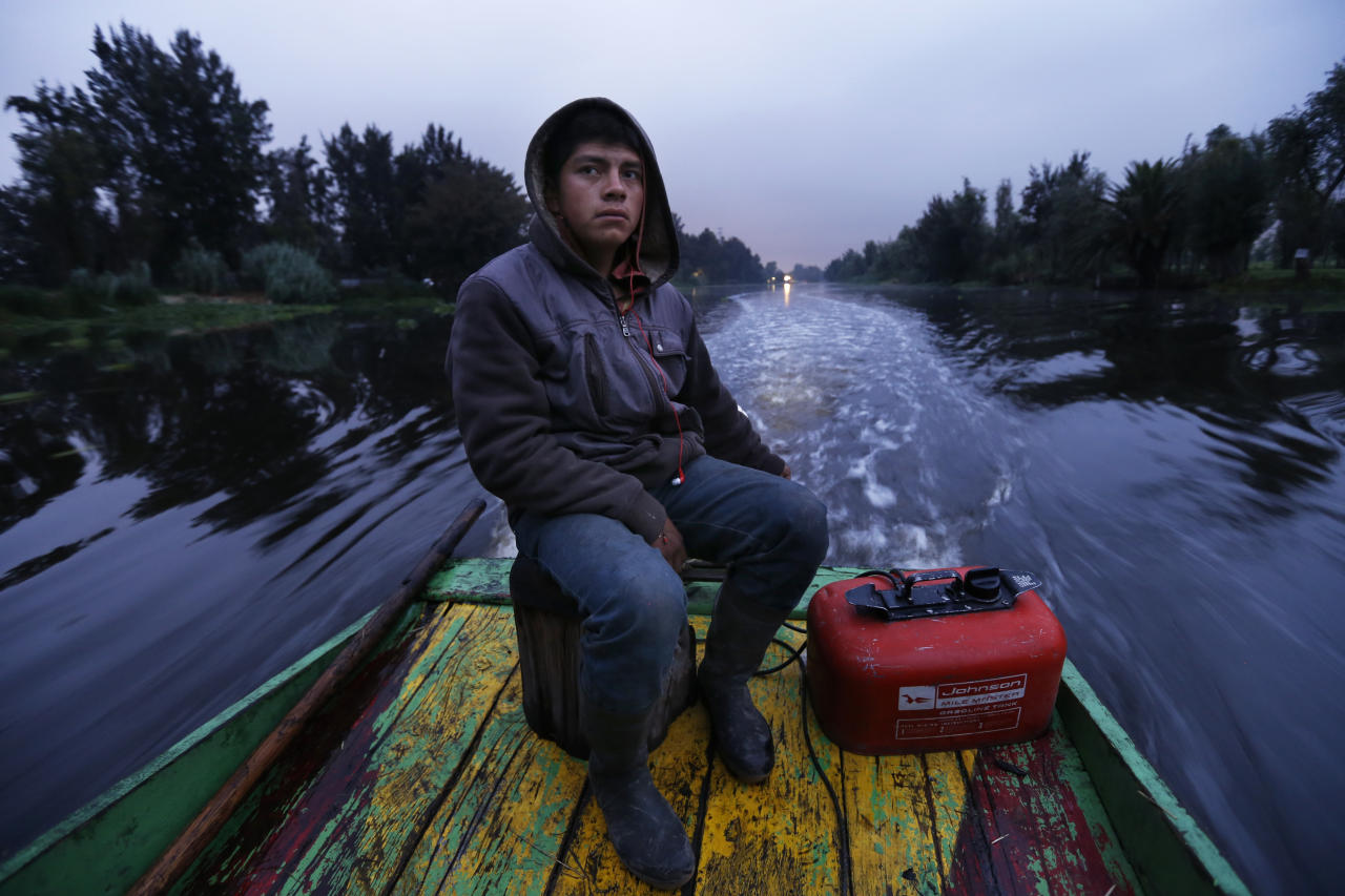 "In this July 13, 2017 photo, Gerardo Cristobal navigates his boat as he ferries farmers and laborers to their floating farms called ""chinampas"" in Xochimilco, Mexico City. Xochimilco, on the far southern edge of Mexico City, is best-known as the ""Mexican Venice"" for its canals and brightly colored boats where locals and tourists can while away a weekend day listening to mariachi music and sipping cold beers. (AP Photo/Marco Ugarte)"