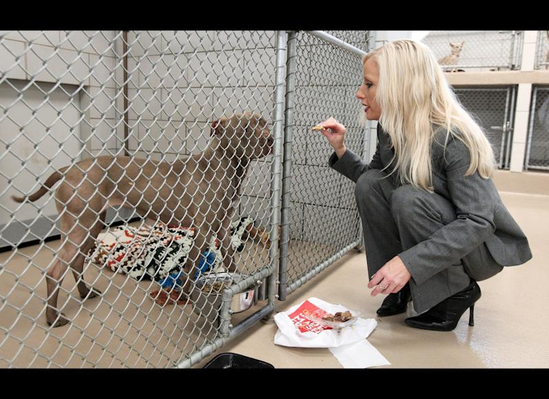 This March 8, 2012 photo shows Nicole Andree feeding a hamburger to her dog, Prada, a 4-year-old pit bull mix, at an animal control facility in Nashville, Tenn. Andree is fighting a lengthy legal battle to save her dog's life after the animal was ordered euthanized for attacking other dogs.