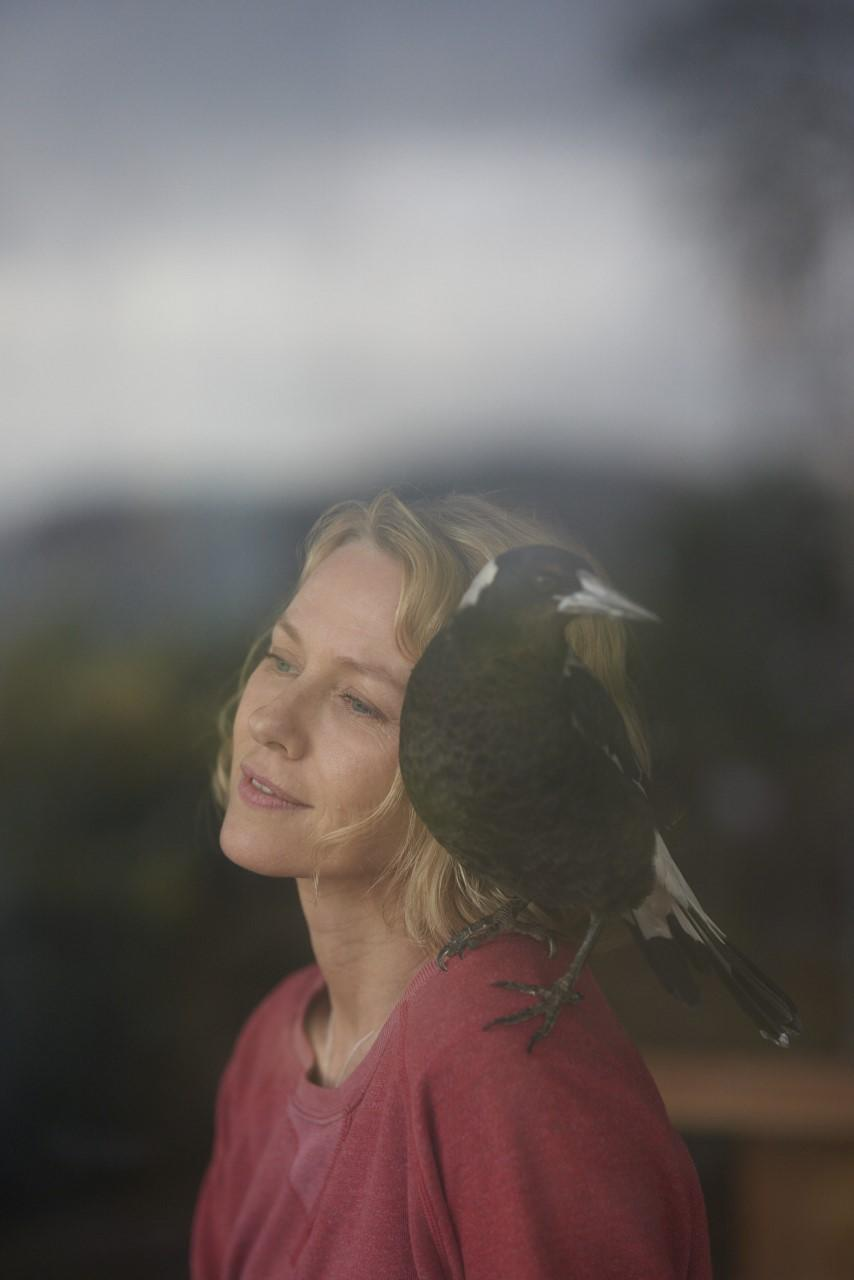 Naomi in character as Sam Bloom with magpie 'Penguin'. Photo: Hugh Stewart (supplied).
