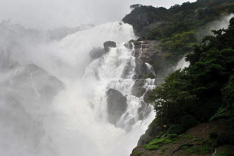 Monsoon turns the Dudhsagar Falls into a foaming, majestic torrent justifying its name, which literally means Ocean of Milk. <br><br>The Mandovi River, one of Goa's major lifelines, originates in the wet  upper reaches of the Western Ghats in eastern Goa, on the border with  Karnataka. At Dudhsagar, the Mandovi plunges down 310 metres (about 1017  feet), and claims distinction as India's fifth highest waterfall.