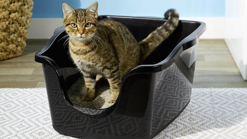 This high-sided litter box is great for cats that struggle with traditional litter boxes.