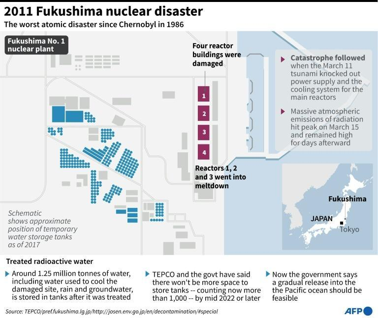 The nuclear plant was crippled after going into meltdown following a tsunami in 2011