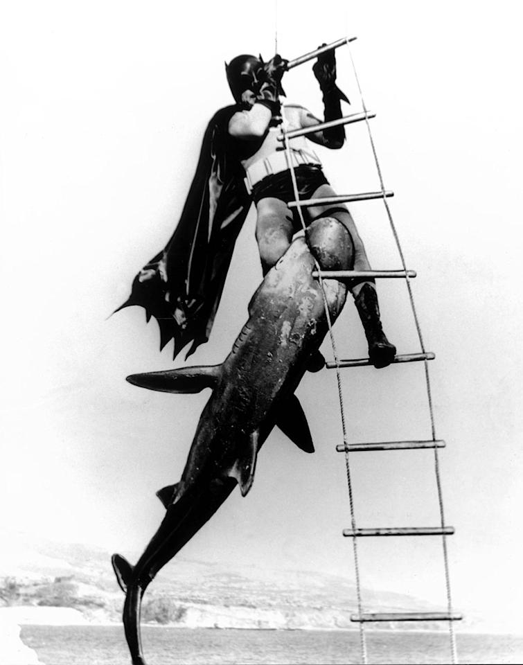"""""""<a href=""""http://movies.yahoo.com/movie/batman-the-movie/"""">Batman: The Movie</a>"""" (1966) <br>""""Holy sardine!"""" yells Robin when he sees his crime fighting friend chomped on while hanging from a helicopter. How in the heck could Batman extricate himself from such a fearsome foe? Shark repellent bat spray, of course."""