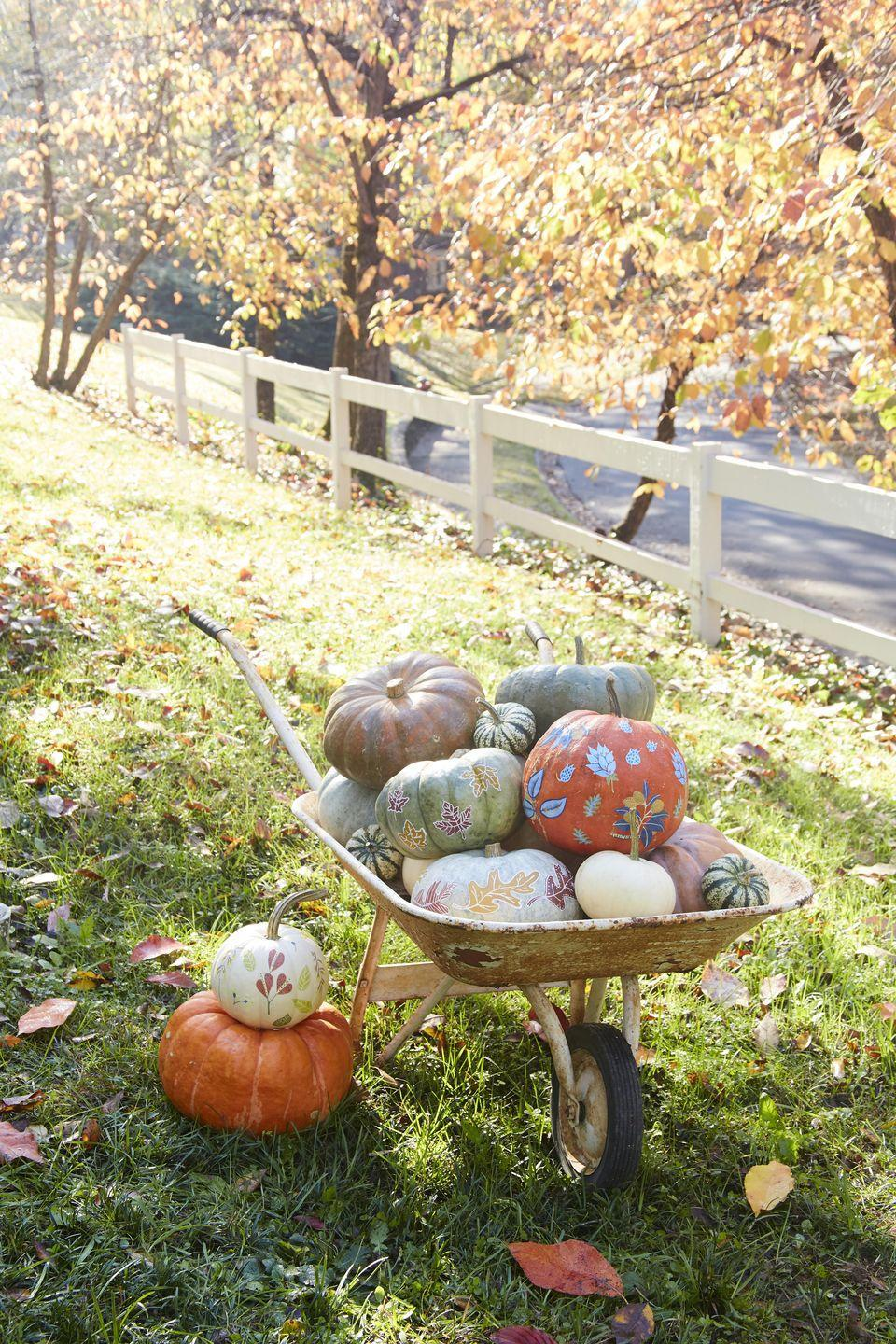 <p>Great trick-treaters and well-wishers with a wheelbarrow stuffed full of painted on and decoupaged leaf motif pumpkins. Bulk up the display with no extra work by including loads of varying size and color pumpkins</p><p><strong>To make: </strong></p><p><strong>Decoupage Leaves:</strong> Cut out leaves and flowers from new or vintage wallpaper or wrapping paper. Decoupage to pumpkins using Mod Podge.</p><p><strong>Outlined Painted Leaves:</strong> Use a leaf shaped stencil to paint fall colored leaves on green, blue or white pumpkins. Once dry use a white paint pen to outline the leaves, add veining, and decorative details.</p>