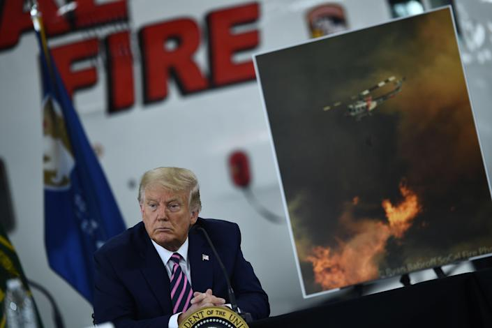 Donald Trump at a briefing on the Californian wildfires (AFP via Getty Images)