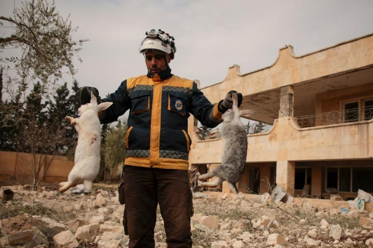 A member of the Syrian Civil Defence also known as the White Helmets holds dead rabbits at the site of an air strike in the jihadist-run Idlib region of northwestern Syria (AFP Photo/Aaref WATAD)