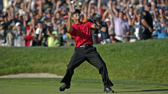 Tiger Woods raises his club in the air and pumps his fist on the golf course.