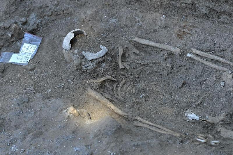A picture shows a skeleton at the Parco dei Ravennati excavation site in Ostia Antica on July 17, 2014 near Rome (AFP Photo/Andreas Solaro )