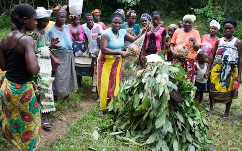 Members of Foday Brima's farming community, on the fringes of the Gola rainforest in Sierra Leone - Credit: Georg Berg