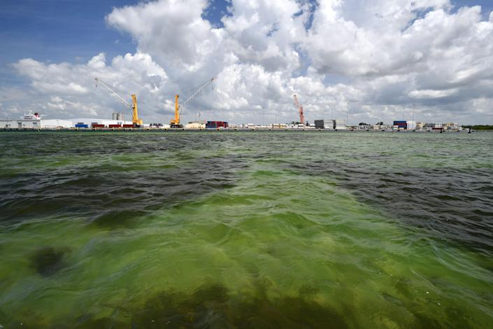 Millions of gallons of industrial wastewater are being pumped into Tampa Bay as the result of a leak at the Piney Point fertilizer plant processing plant.