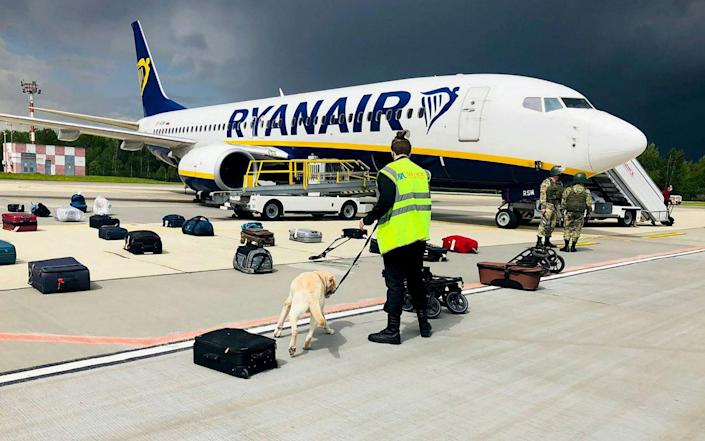 A Belarusian dog handler checks luggage from Ryanair flight FR4978 after it was forced to land in Minsk - AFP