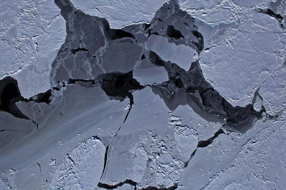 Different thicknesses of sea ice in Antarctica's Bellingshausen Sea. Open water is dark black; older sea ice has a covering of bright white snow, and thick ice is grey.