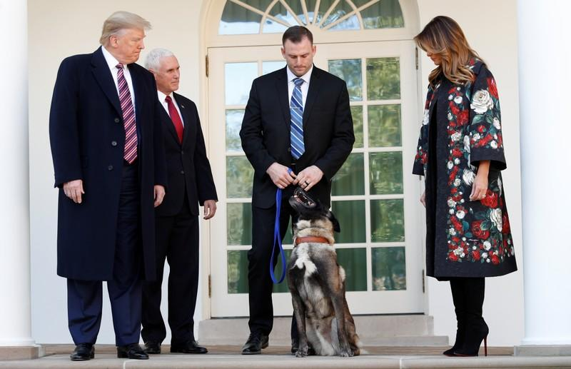 President Trump poses with military dog Conan that participated in Syria al-Baghdadi raid at White house in Washington