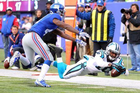 Dec 20, 2015; East Rutherford, NJ, USA; Carolina Panthers wide receiver Corey Brown (10) dives but comes up a yard short of the pylon against New York Giants corner back Dominique Rodgers-Cromartie (41) during the third quarter at MetLife Stadium. Mandatory Credit: Brad Penner-USA TODAY Sports