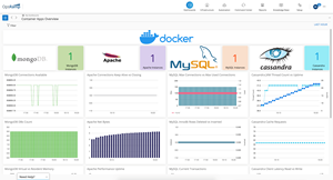 OpsRamp now detects and monitors applications running in containerized workloads.
