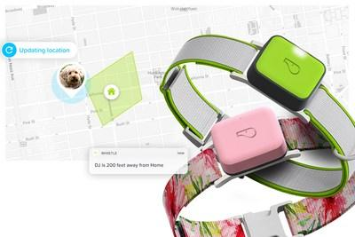Whistle GO and Whistle GO Explore will keep pet owners connected 24/7 with real-time location tracking.