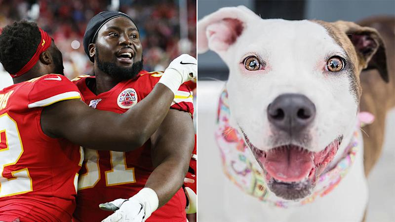 Derrick Nnadi marked his Super Bowl win with a brilliant gesture involving adopted dogs.