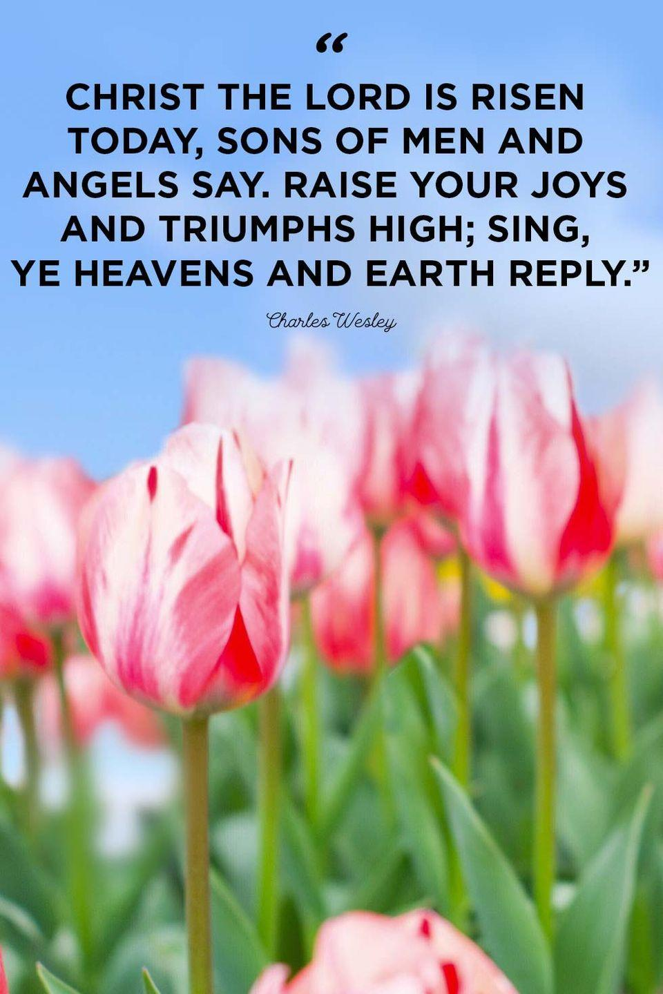 """<p>""""Christ the Lord is risen today, sons of men and angels say. Raise your joys and triumphs high; sing, ye heavens and Earth reply.""""</p>"""