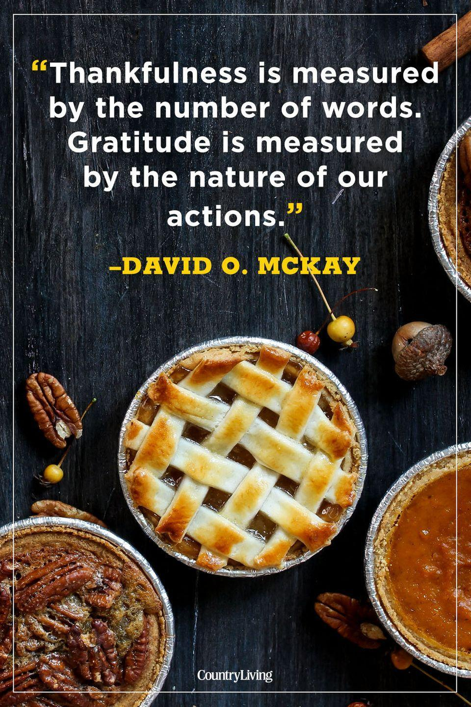 """<p>""""Thankfulness is measured by the number of words. Gratitude is measured by the nature of our actions.""""</p>"""
