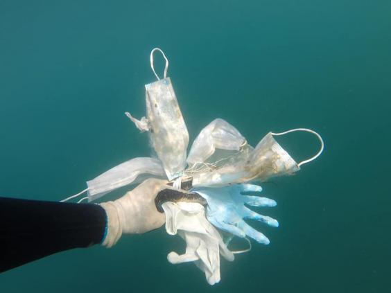 Conservation NGO Opération Mer Propre found dozens of masks and plastic gloves during a recent diving trip in the South of France (Opération Mer Propre)