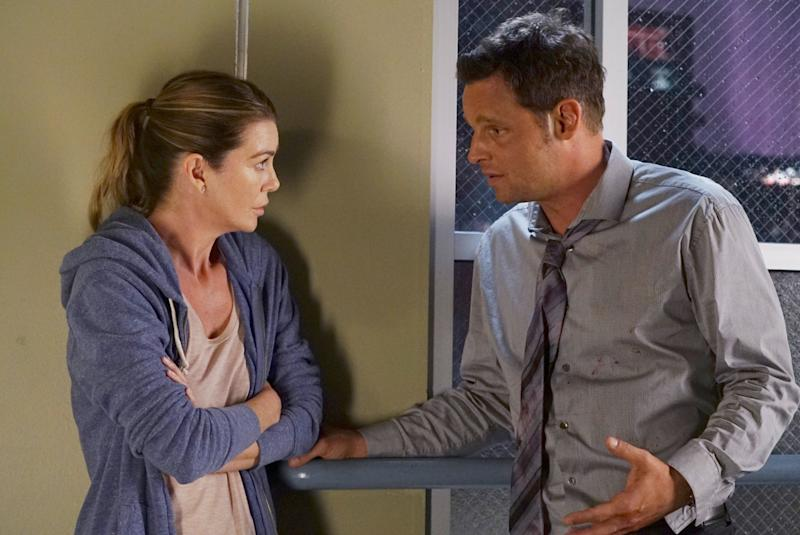 Why Grey's Anatomy Should Go There With Meredith and Alex