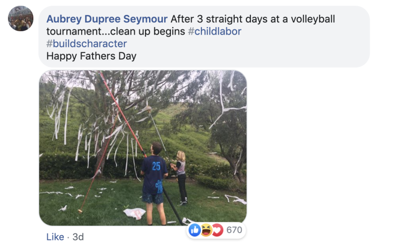 Seymour's sons clean up the toilet paper-strewn yard (Credit: Aubrey Dupree Seymour/Facebook)