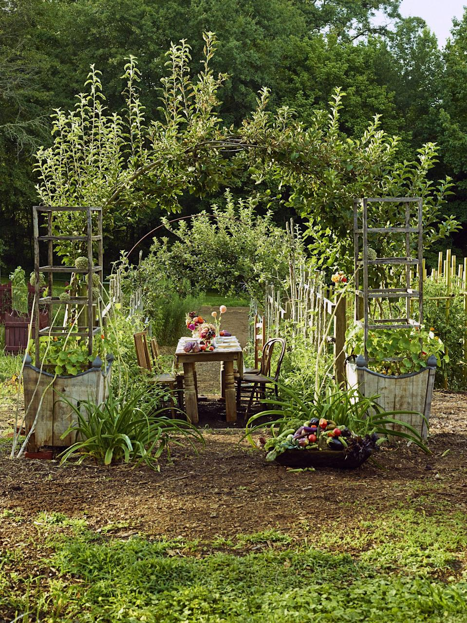 "<p>An herb garden isn't exclusively the secret weapon of the best farm-to-table <a href=""https://www.veranda.com/luxury-lifestyle/books-to-read/a34495803/nov-book-club-john-birdsall-man-who-ate-too-much/"" rel=""nofollow noopener"" target=""_blank"" data-ylk=""slk:culinary restaurants"" class=""link rapid-noclick-resp"">culinary restaurants</a>—it can be yours too. From throwing together a last-minute vegetable stew when unexpected guests arrive to creating an ambrosial <a href=""https://www.veranda.com/home-decorators/g29284706/fall-table-settings-ideas-from-gregory-blake-sams/"" rel=""nofollow noopener"" target=""_blank"" data-ylk=""slk:feast for the holidays"" class=""link rapid-noclick-resp"">feast for the holidays</a>, having an herb garden a step away from the kitchen will provide fresh and fragrant flavor at every meal. </p><p>Perennial herbs such as thyme and rosemary will grow back year-after-year and look just as beautiful mixed in with a bouquet of flowers as they do garnishing dinner or cocktails. These easy-to-care-for herbs do best planted together in large <a href=""https://www.veranda.com/outdoor-garden/g31940674/outdoor-planters/"" rel=""nofollow noopener"" target=""_blank"" data-ylk=""slk:outdoor planters"" class=""link rapid-noclick-resp"">outdoor planters</a> or mixed in with the <a href=""https://www.veranda.com/outdoor-garden/g32008591/flowering-shrubs/"" rel=""nofollow noopener"" target=""_blank"" data-ylk=""slk:rest of the garden"" class=""link rapid-noclick-resp"">rest of the garden</a> but can also be <a href=""https://www.veranda.com/shopping/home-accessories/g33624826/best-indoor-planters/"" rel=""nofollow noopener"" target=""_blank"" data-ylk=""slk:grown inside"" class=""link rapid-noclick-resp"">grown inside</a> in colder months with enough light, water, and attention. </p><p>A potager can be started from seed but is more easily established with seedlings from the local nursery planted in full sun. Most herbs will last through the first frost depending on the climate, but collecting handfuls of herbs in the early fall to hang and dry will ensure supplies through the winter. From colorful flowers for garnishing salads to rustic leaves full of flavor, these perennial herbs are as useful as they are beautiful in the garden.</p>"