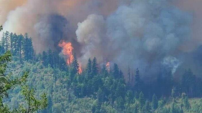 The Monument Fire burns in Northern California on Aug. 2, 2021, near forests set aside to offset industrial carbon pollution. Healthy forests store carbon naturally, but when they burn, the carbon literally goes up in smoke, adding to global climate change instead of helping to slow it.