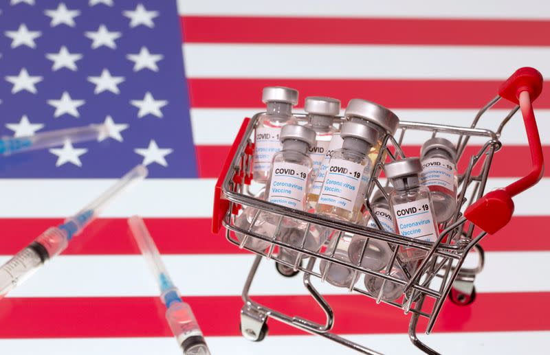 """FILE PHOTO: A small shopping basket filled with vials labeled """"COVID-19 - Coronavirus Vaccine"""" and medical syringes are placed on a U.S. flag"""