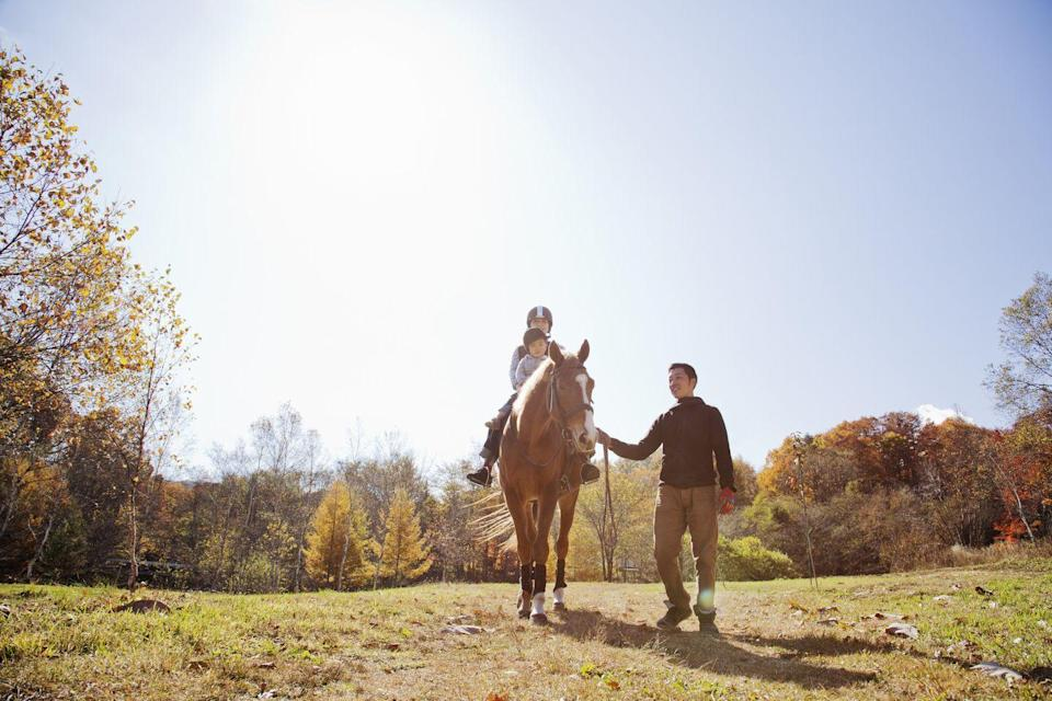 <p>Saddle up! From the top of a horse is one of the best ways to enjoy fall's stunning foliage, gently trotting through autumnal leaves and following trails through woods and over streams.</p>