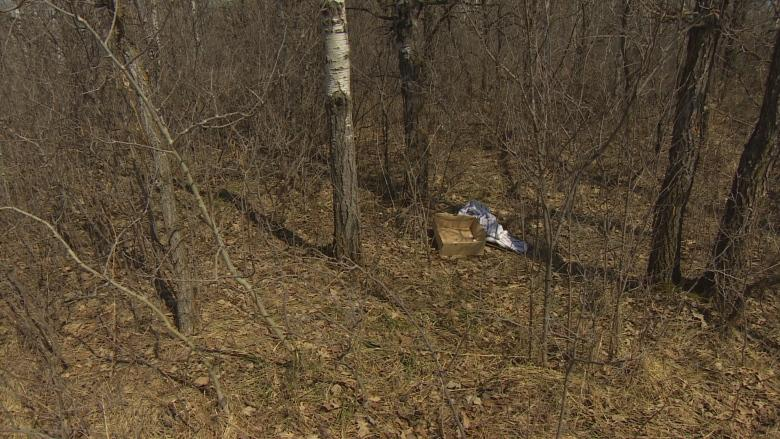 Man finds dead puppy, syringe in box at Birds Hill Park