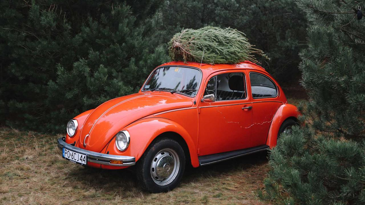 """<p>The <a href=""""https://uk.motor1.com/tag/holiday/?utm_campaign=yahoo-feed"""">holiday</a> season is here, and it's time to put up a <a href=""""https://uk.motor1.com/tag/christmas/?utm_campaign=yahoo-feed"""">Christmas</a> tree. While there's a lot of convenience from opting for a fake tree that can sit in storage for 11 months of the year, opting for a real tree just feels more in the spirit of the season. If you're not sure about how to get that conifer home, then a new list from AAA is ready to help. Click through the slides above to see the tips about making an easier job of hauling that freshly cut evergreen to your home.</p> <h2>Rockin' around the Christmas tree:</h2><ul><li><a href=""""https://uk.motor1.com/news/298182/lotus-merry-driftsmas-video/?utm_campaign=yahoo-feed"""">How to transport a Christmas tree with a Lotus Evora</a></li><br><li><a href=""""https://uk.motor1.com/news/284171/fiat-christmas-tree-survey/?utm_campaign=yahoo-feed"""">Driving with a Christmas tree could land you an unwanted gift</a></li><br></ul><br>"""