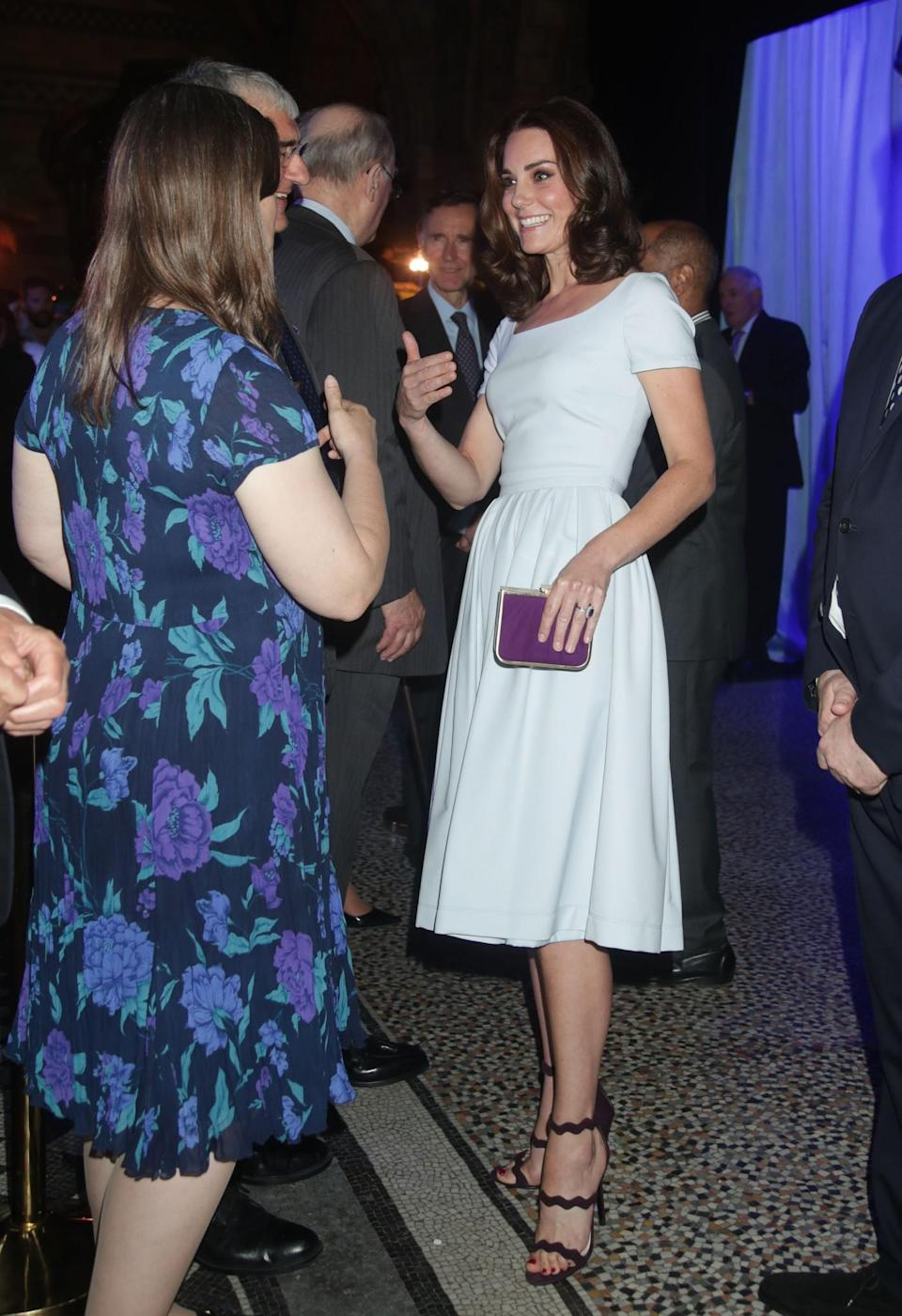 <p>Kate went for a much simpler look for the re-opening of the Hintze Hall at the Natural History Museum. Wearing a powder blue midi dress by London-based label Preen, she towered above the other guests in a pair of plum scalloped sandals by Prada.<br><em>[Photo: PA]</em> </p>