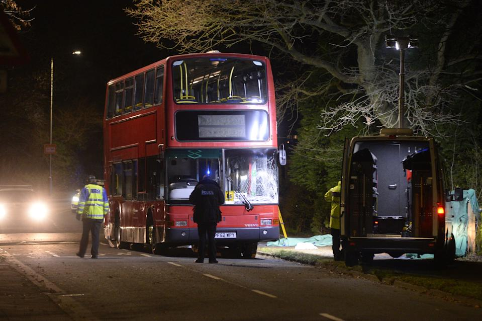 Sian Ellis was hit by a red double-decker Volvo bus outside her school (Picture: BPM)