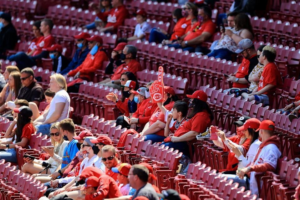 Fans in Cincinnati watch game action between the St. Louis Cardinals and the Reds.