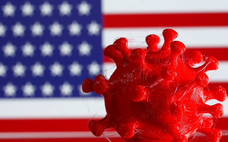 FILE PHOTO: A 3D-printed coronavirus model is seen in front of a U.S. flag on display in this illustration