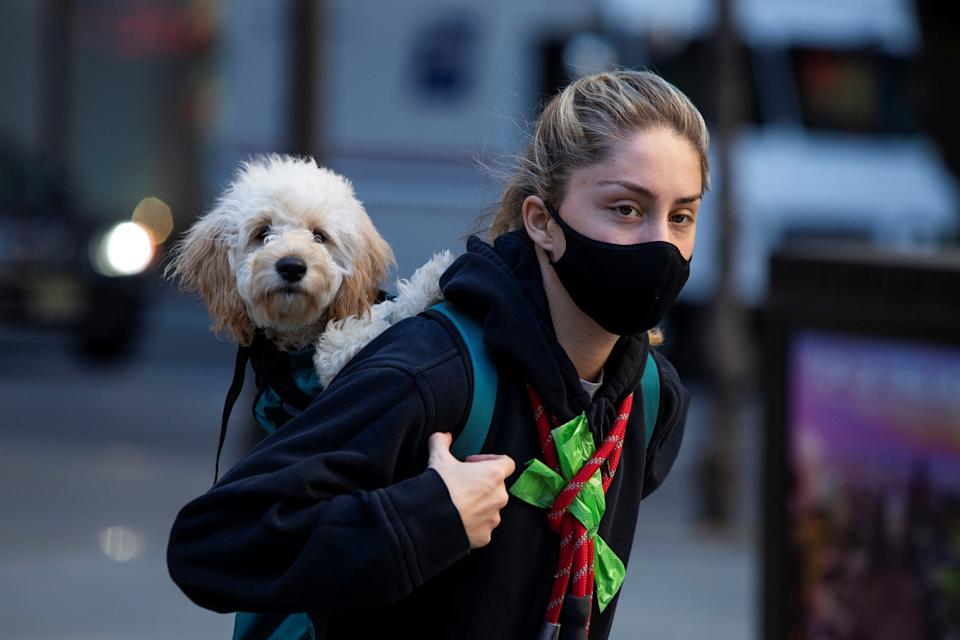 A woman wears a protective face mask while carrying her dog as the global outbreak of the coronavirus disease (COVID-19) continues, in New York City, New York, U.S., November 20, 2020. REUTERS/Eduardo Munoz