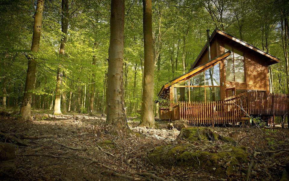 Blackwood Forest in Hampshire spans 667 acres that can be explored