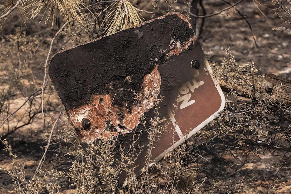 A burned sign marking a national forest road is seen on July 14 near Sprague River, Oregon.