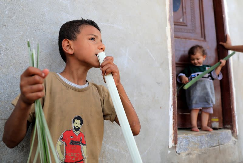 Sayed Abdul Rahman, 9, cuts papyrus plant with his mouth at a workshop in al-Qaramous village